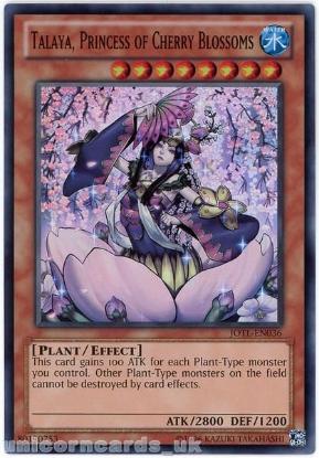 Picture of JOTL-EN036 Talaya, Princess of Cherry Blossoms Super Rare UNL Edition Mint Card