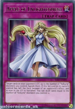 Picture of SAST-EN091 Apple of Enlightenment Rare 1st Edition Mint YuGiOh Card