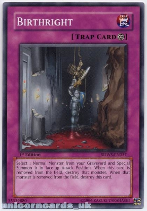 Picture of SDWS-EN037 Birthright 1st Edition Mint YuGiOh Card