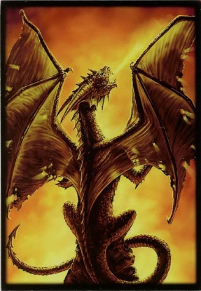 Picture of Max Protection Sleeves :: Fire Breather :: YuGiOh Size :: Pack of 60 ::