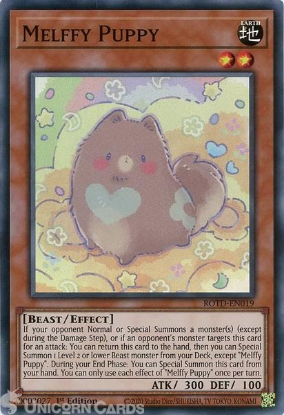 Picture of ROTD-EN019 Melffy Puppy Super Rare 1st Edition Mint YuGiOh Card